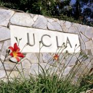 UCLA Stone Wall