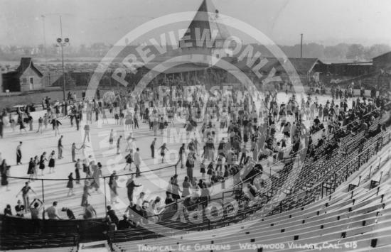 Tropical Ice Gardens (1938)